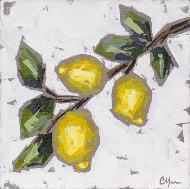 """Lemon Sprig no. 1"" 12x12"