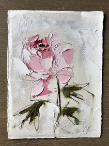 """Peony Vignette VIII"" 7x5"" Oil/Graphite on Paper"