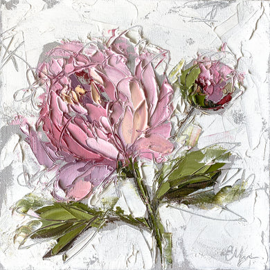 """Peony I"" 12x12 Oil/Graphite on Canvas"