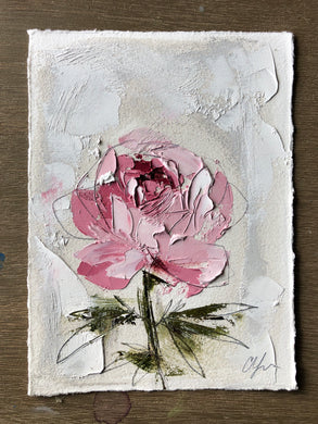 "SOLD - ""Peony Vignette VI"" 7x5"" Oil/Graphite on Paper"