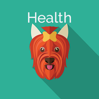 health related products for dogs