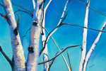 Birch tree Christmas cards | Salt Air Supply
