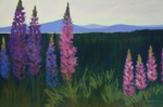Beautiful pastel greeting card featuring lupine with mountains in the background | Salt Air Supply