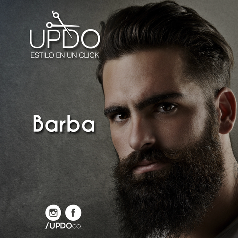 Color Barba Updo He UP 031
