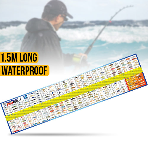 New Zealand Fish ID Maxi Ruler