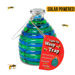Light Up Wasp Trap