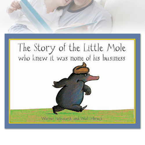 The Story of Little Mole Board Book