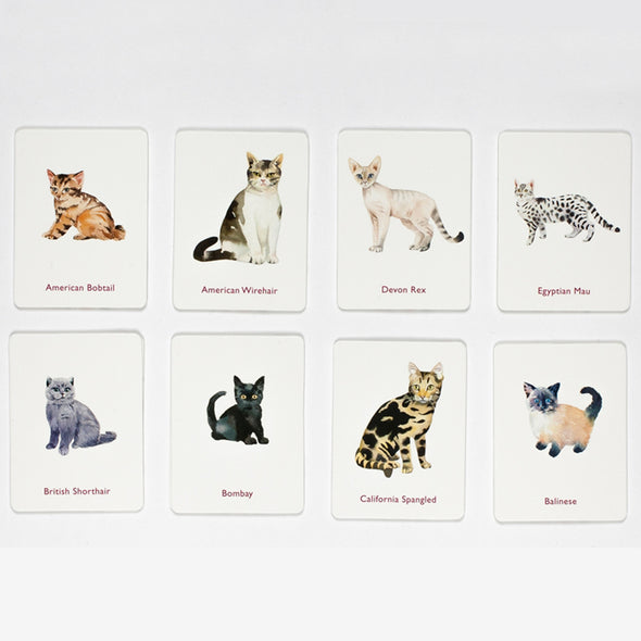 Cats and Kittens: A Memory Game