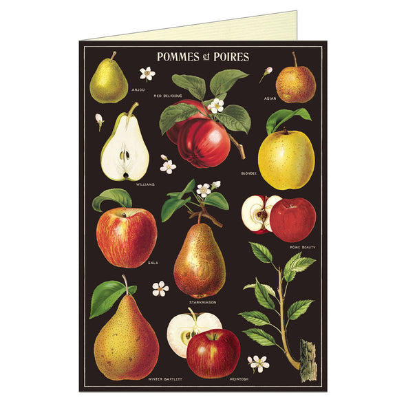 Cavallini Greeting Card Apple