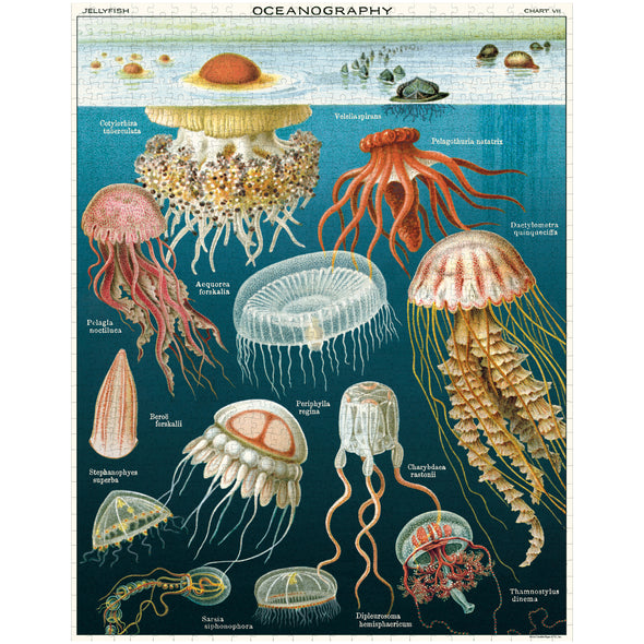 Copy of Cavallini & Co. Jellyfish Vintage Puzzle 1000 Pieces