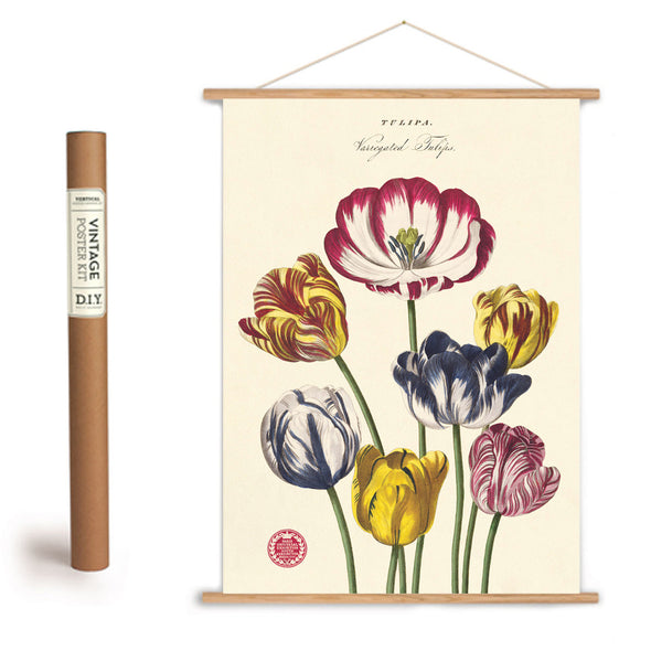 Cavallini & Co. Tulip Poster/Luxe Gift Wrap