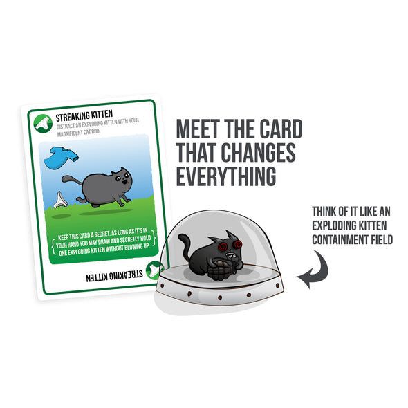 Streaking Kittens Expansion of Exploding Kittens