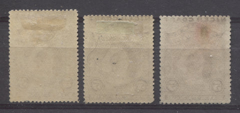 Vertical opaque, soft wove paper from the 1894 Waterlow Issue of Niger Coast Protectorate showing coarse mesh