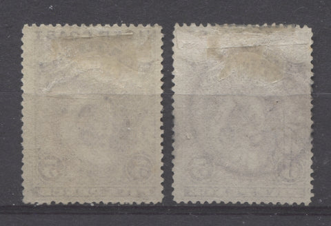 Vertical wove paper from the 1894 Waterlow Issue showing closely spaced mesh