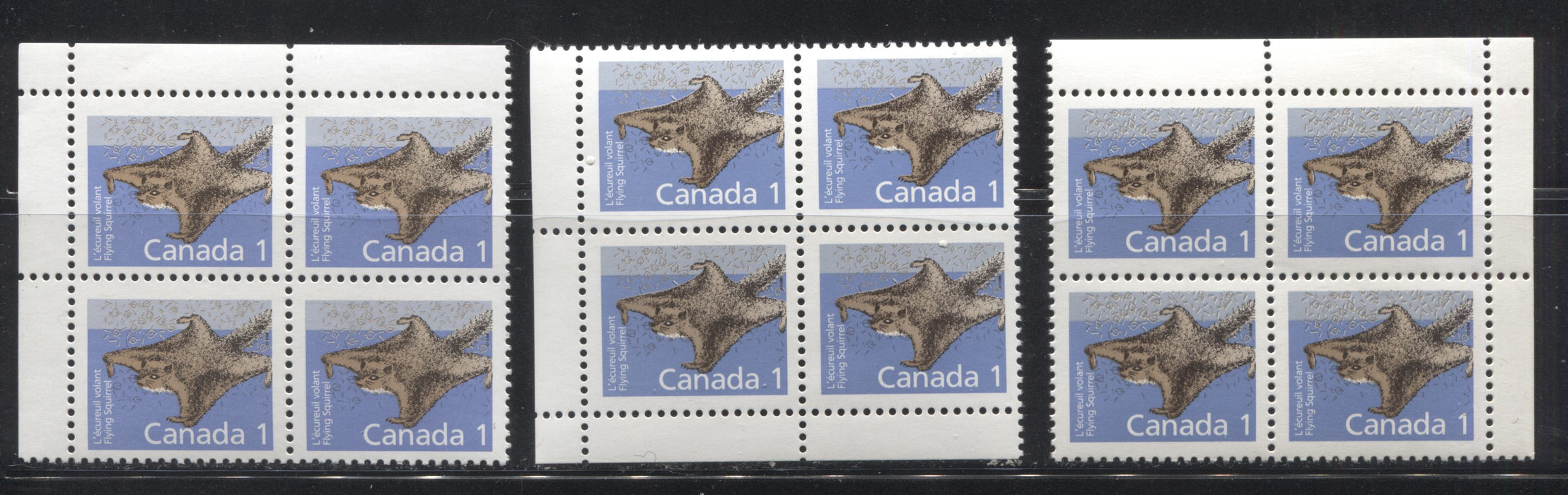 Canada #1155, 1155i 1c Flying Squirrel 1988-1991 Wildlife and Architecture Issue, a VFNH Group of 3 Field Stock Blocks on DF/DF Slater Paper and Dead/NF Coated Papers Paper
