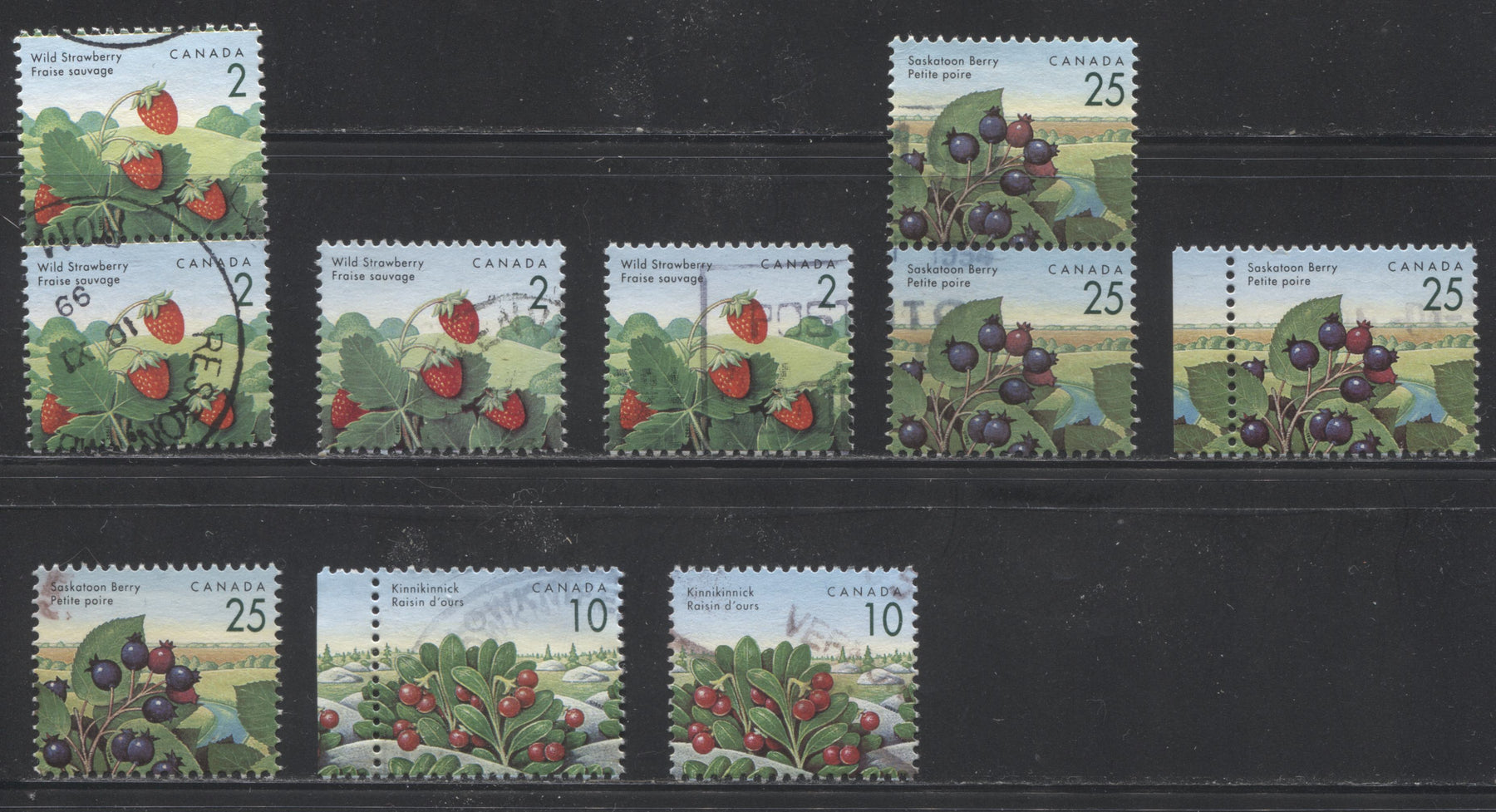 Canada #1350v/1355vii 2c Wild Strawberry, 10c Kinnikinnick & 25c Saskatoon Berry, 1991-1998 Fruit & Flag Definitive Issue, VF Used Examples, Different Printings, Each Showing Different Constant Varieties