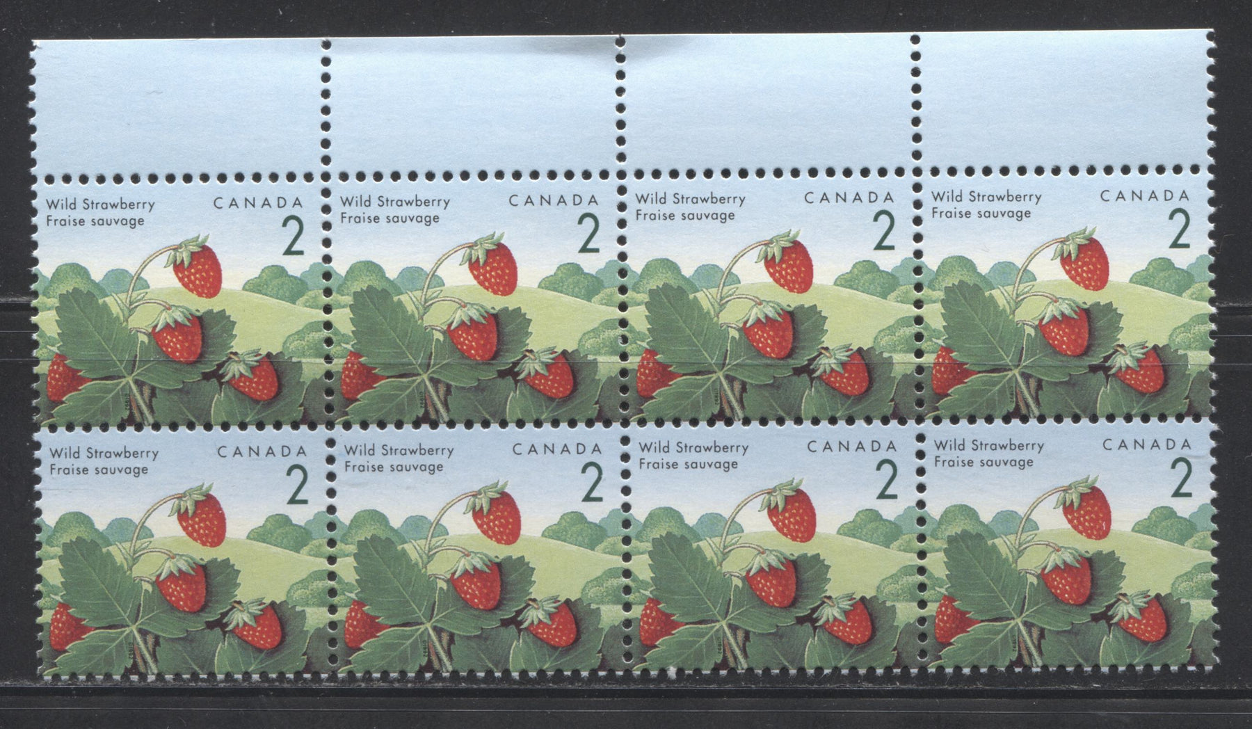 "Canada #1350v,vi 2c Wild Strawberry, 1991-1998 Fruit & Flag Definitive Issue, a VFNH Block of 8 of the Ashton Potter Canada Printing Showing Both the ""Blue Thread"", and ""Rose Thorn"" Varieties"