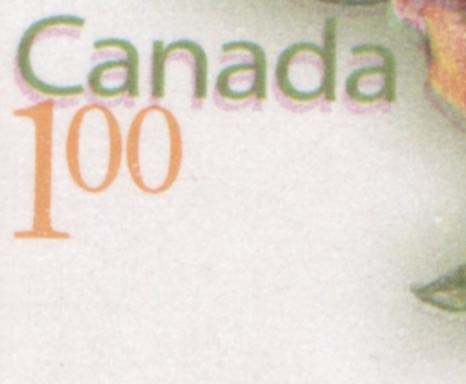 Canada #BK419 2004-2010 Floral and Flag Issue, A VFNH $6 Booklet Containing $1 Giant Helleborine, Lowe-Martin Printing on NF/HB TRC Paper, Showing Slight Doubling of Canada Due to Colour Shift