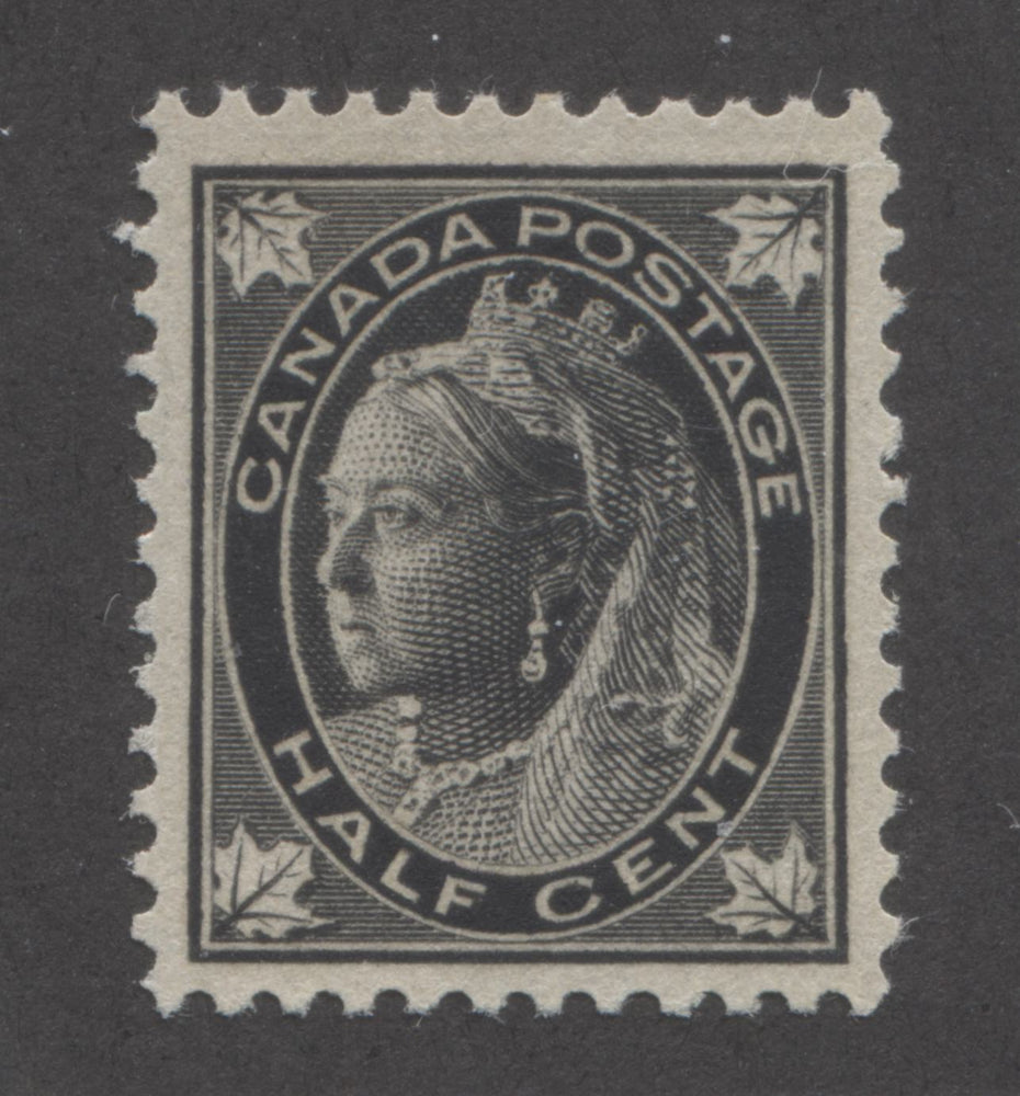 Canada #66 (SG#142) Half Cent Black 1897-1898 Maple Leaf Issue, A Very Fine NH Example Brixton Chrome