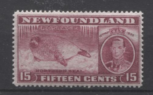Newfoundland #239 (SG#263) 15c Brown Purple 1937 Long Coronation Perf. 14.25 VF-84 OG Brixton Chrome