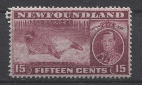 Newfoundland #239 (SG#263c) 15c Brown Purple 1937 Long Coronation Perf 13.8 VF-84 OG Brixton Chrome