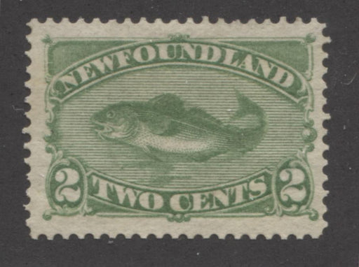 Newfoundland #46i 2c Deep Yellow Green Codfish 1880 Cents Issue, A Very Fine Mint Example of the Montreal Printing on Stout Horizontal Wove Paper, Perf. 12.1 Brixton Chrome