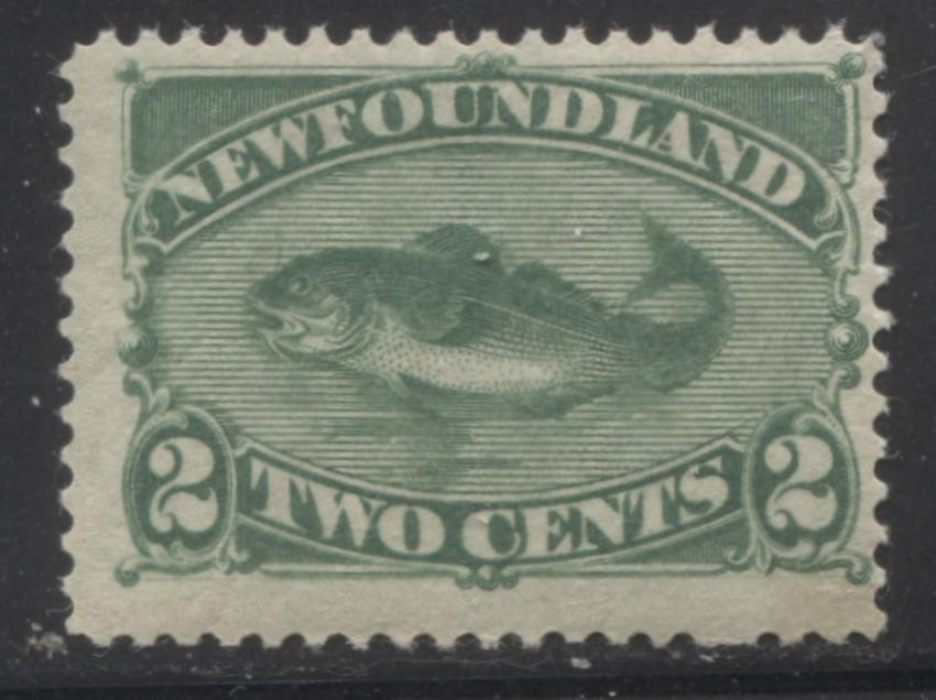 Newfoundland #47 2c Deep Green Codfish, 1880-1896 Third Cents Issue A Fine Mint NH Example of the Second Ottawa Printing on Soft Vertical Wove, Perf. 12.1 Brixton Chrome