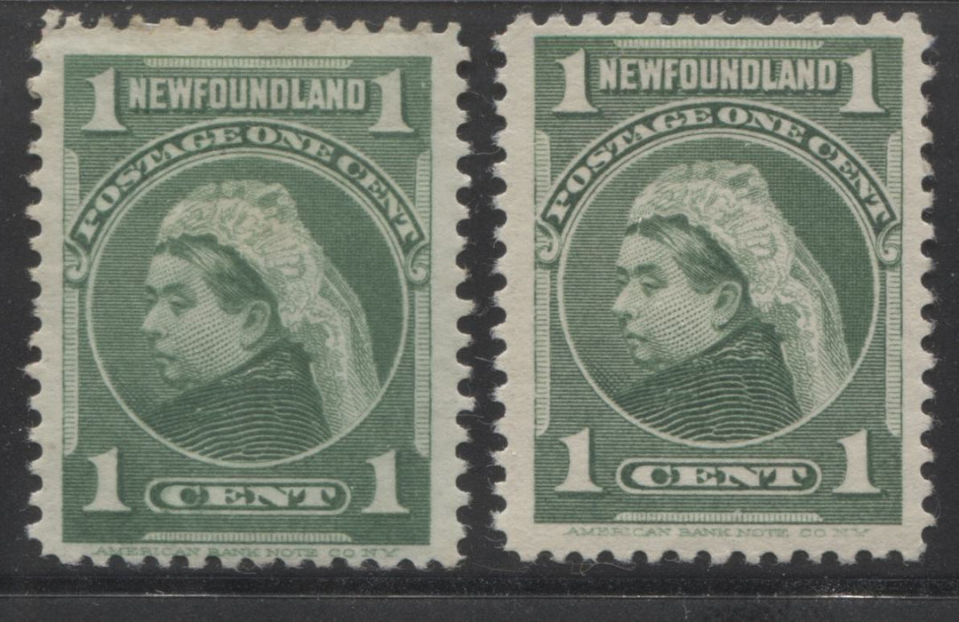 Newfoundland #80 1c Green Queen Victoria, 1898-1908 Royal Family Issue, Fine and Very Fine OG Examples of Two Different Shades and Papers Brixton Chrome