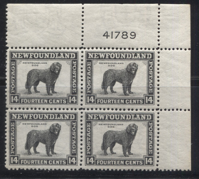 shopify auction Brixton Chrome Newfoundland #261 14c Black Newfoundland Dog, 1941-1949 Second Resources Issue, A Very Fine NH Upper Right Plate 41789 Block-145631-88865