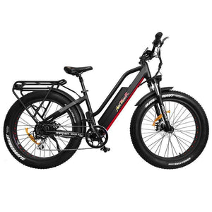 AddMotor MOTAN M-450 P7 Fat Tire Fork Full Suspension Electric BikeRelax And Ride Bikes