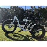 EMOJO Caddy Cargo Electric TrikeElectric TrikeEMOJORelax And Ride Bikes
