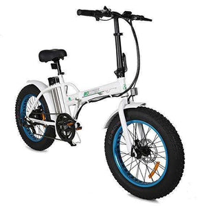 "Ecotric 36V Fat Tire Portable & Folding Electric Bike 20""Relax And Ride Bikes"