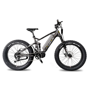 QUIETKAT 2020 750W RIDGERUNNERElectric BicycleQuietKatRelax And Ride Bikes