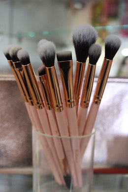 Bonita Beauty - 10 pc Brush Set
