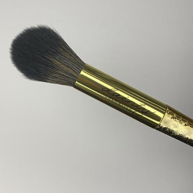 Pointed Highlighting brush