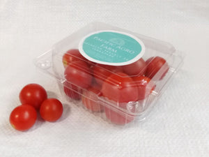 Local Cherry Tomato | Harvest Fresh Daily | Singapore Farm