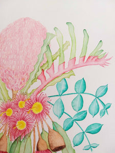 Australian floral watercolour painting