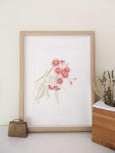 Load image into Gallery viewer, art print Australian gum blossom