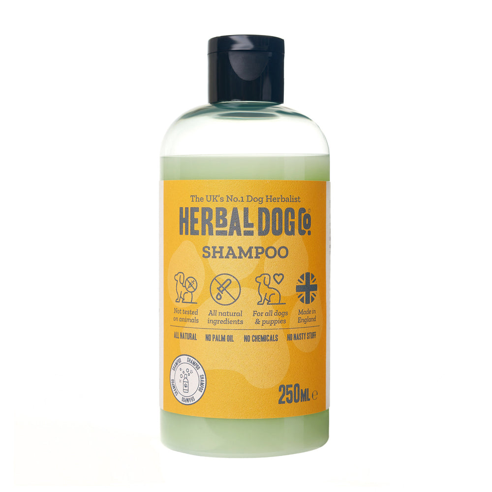 Herbal Dog Co Lime & Coconut Shampoo