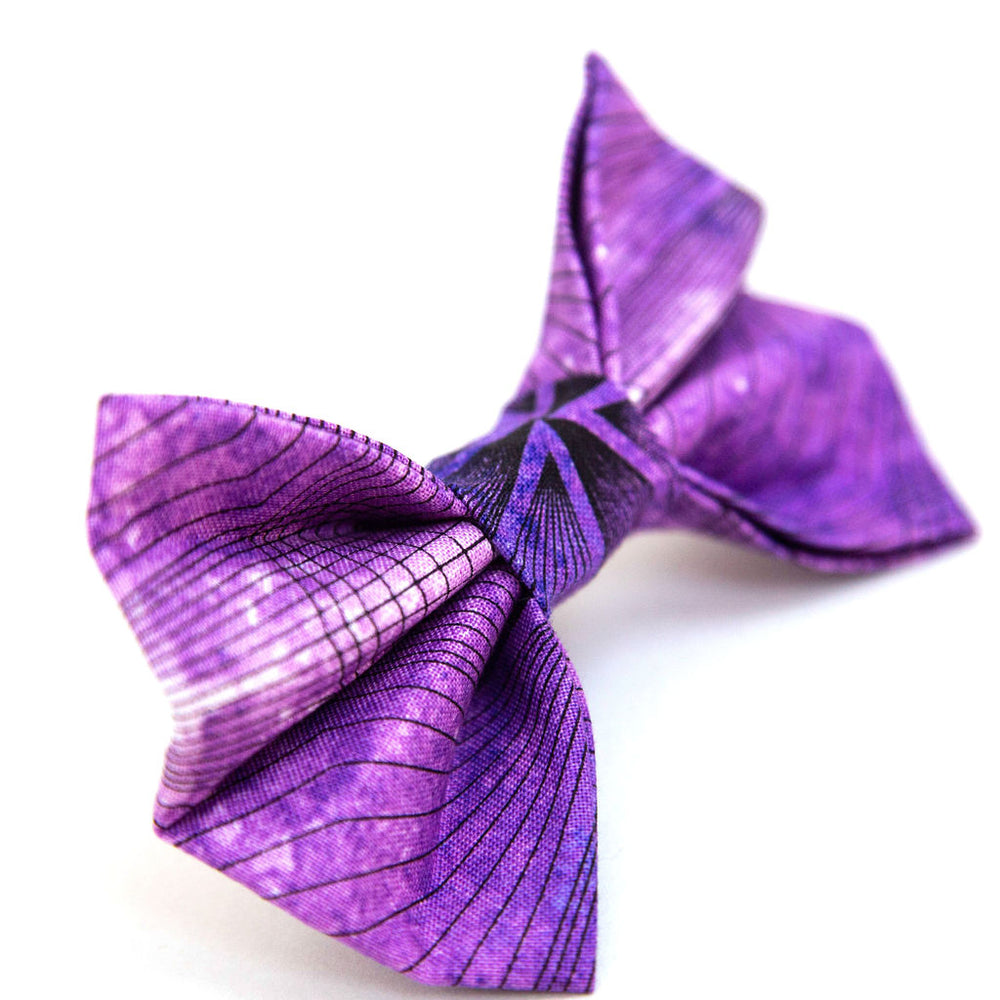 Illusion Bow