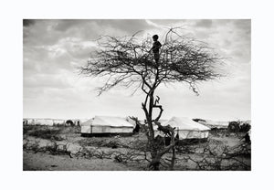 Boy in tree, Somalia 2010 - Photographic print, stamped and signed by Jan Grarup. Printet on Baryta Fine Art 325 gram paper in A2 (59,4 x 42cm)