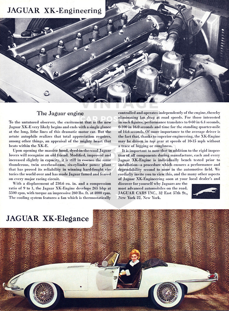 1962 Jaguar XKE Convertible Roadster     #100242