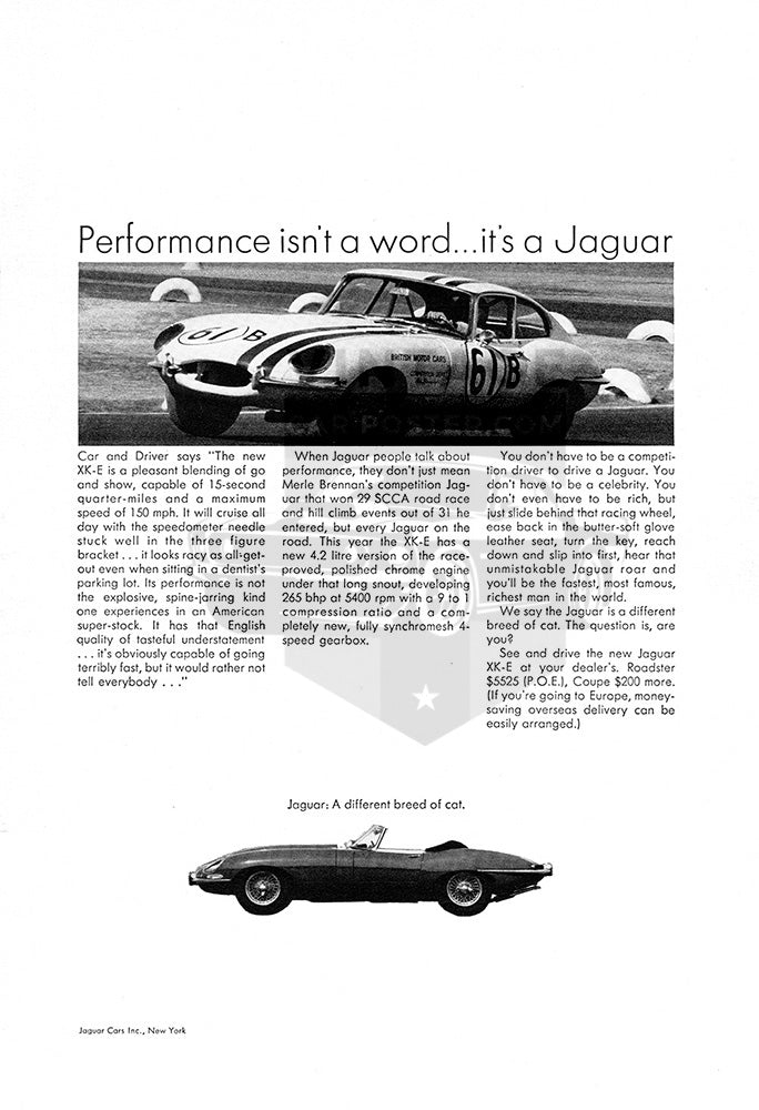Jaguar Car Poster, 1965 Jaguar XK-E Convertible Roadster GT Coupe, Vintage Ad Wall Art