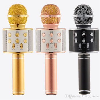 Wireless Karaoke Microphone with Bluetooth Speaker - Davy Taylor