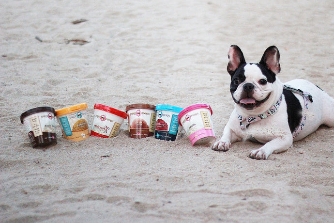 Discover Another Way to Spoil Your Pup