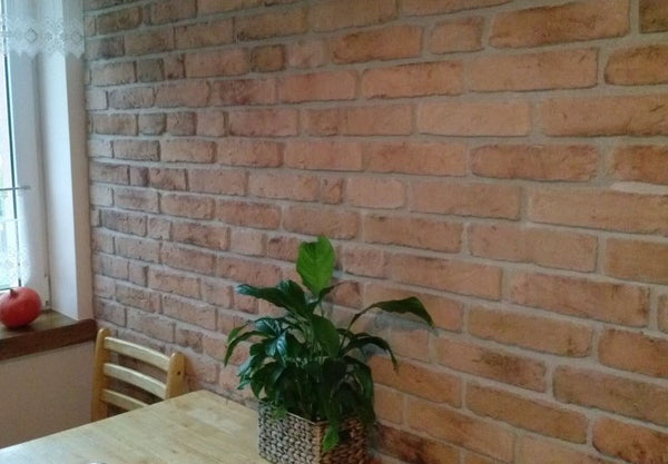 Old Natural Light Brick Slip Feature Wall