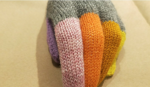 Alpaca Multi Coloured Gloves