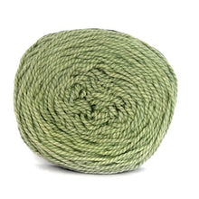 Load image into Gallery viewer, Nurturing Fibres Eco-Cotton Yarn in Willow