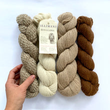 Load image into Gallery viewer, Illimani's Eco-Llama Yarn Full Skeins