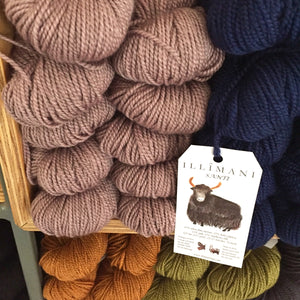 Illimani's Santi Yarn at the Yarn Room